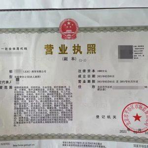 北京商贸公司营业执照
